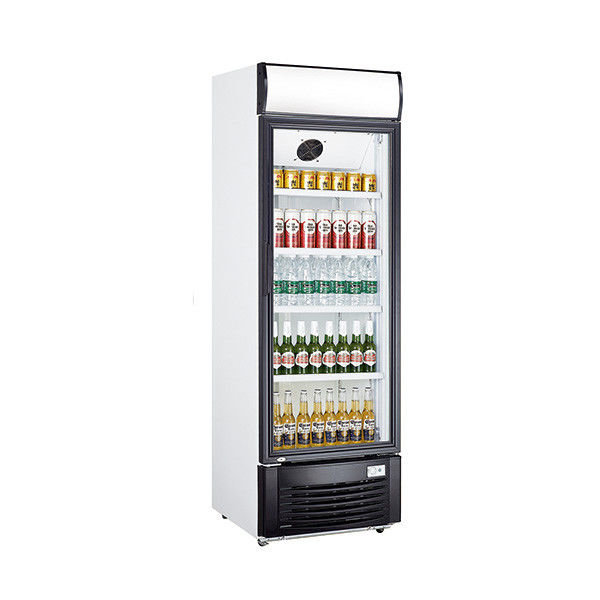 Single Door Beverage Display Cooler , 438L Commercial Beverage Fridge